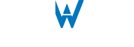 Levasseur Warren Inc.